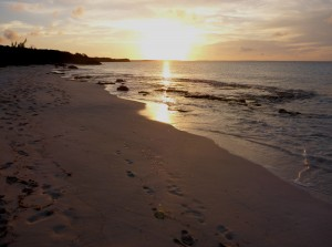 25-Rat Cay Sunset